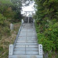 山王神社の写真・動画_image_133996
