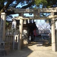 鷹合神社の写真・動画_image_137462