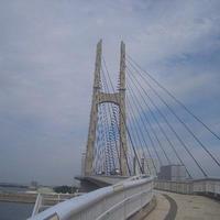 田尻スカイブリッジの写真・動画_image_142005