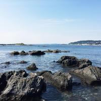 天神島臨海自然教育園の写真・動画_image_150717
