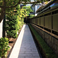 かまくら山路の写真・動画_image_151982