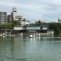 レンタルボートの写真・動画_image_152423