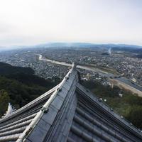 岐阜公園の写真・動画_image_154902