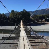 塩郷の吊り橋の写真・動画_image_162951