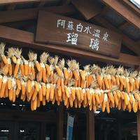 阿蘇白水温泉「瑠璃」の写真・動画_image_164790