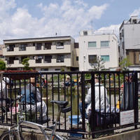 寿々木園の写真・動画_image_176892