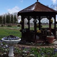 紫竹ガーデン遊華の写真・動画_image_179871