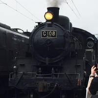 新金谷駅の写真・動画_image_181180