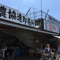 鎌倉市農協連即売所の写真・動画_image_181292