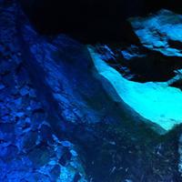 稲積水中鍾乳洞の写真・動画_image_188990