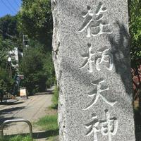 荏柄天神社の写真・動画_image_189093