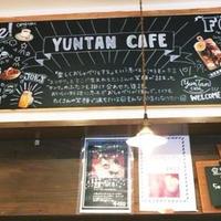 ユンタン カフェの写真・動画_image_193807