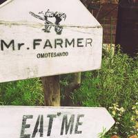 Mr.FARMERの写真・動画_image_201067