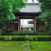 早雲寺の写真・動画_image_201185