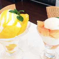 フルーツカフェオレンジの写真・動画_image_201572
