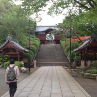 護国寺の写真・動画_image_202351