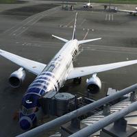 羽田空港国際線ターミナルビルの写真・動画_image_202381