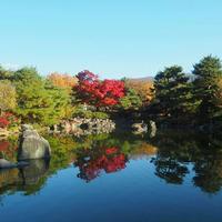 あがたの森公園の写真・動画_image_205434