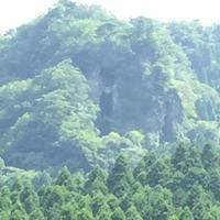 免の石の写真・動画_image_212131