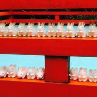岡崎神社の写真・動画_image_213337