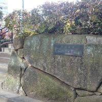 区立猿楽古代住居跡公園の写真・動画_image_214882
