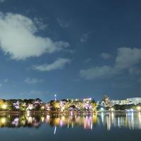 大濠公園日本庭園の写真・動画_image_216836