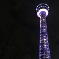 横浜マリンタワーの写真・動画_image_217941