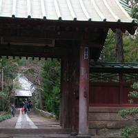 寿福寺の写真・動画_image_224029