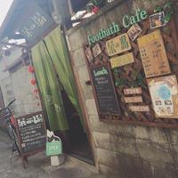 茶の湯の写真・動画_image_224745