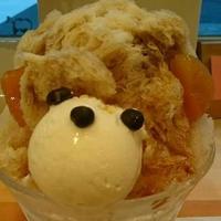 【閉店】ジャパニーズアイス 櫻花(JAPANESE ICE OUCA) の写真・動画_image_227137