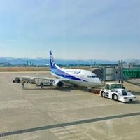 羽田空港国際線ターミナルビルの写真・動画_image_228454