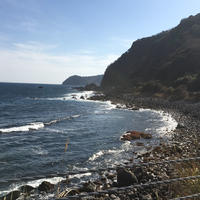 伊豆半島の写真・動画_image_228762