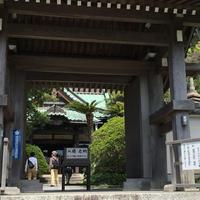 祇園山 安養院の写真・動画_image_230357
