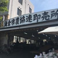 鎌倉市農協連即売所の写真・動画_image_234246