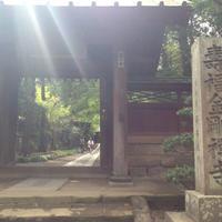 寿福寺の写真・動画_image_235326