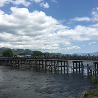 嵐山公園の写真・動画_image_235861