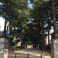あがたの森公園の写真・動画_image_236312