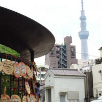 今戸神社の写真・動画_image_238503