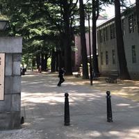 あがたの森公園の写真・動画_image_239600