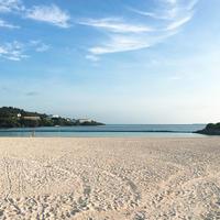 エメラルドビーチの写真・動画_image_246237