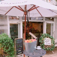 Mother earth Cafeの写真・動画_image_250716