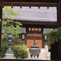 信綱寺の写真・動画_image_250892