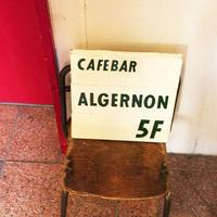 Cafe Bar アルジャーノンの写真・動画_image_252171