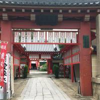 愛染堂勝鬘院(愛染さん)の写真・動画_image_252405