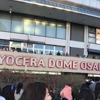 京セラドーム大阪の写真・動画_image_253345