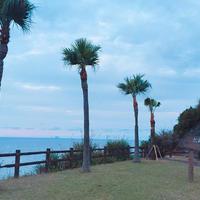 奄美市大浜海浜公園の写真・動画_image_257718