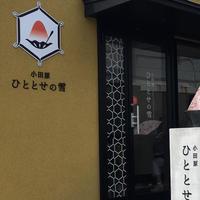 小田原 ひととせの雪の写真・動画_image_261148