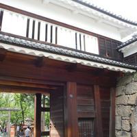 上田城跡公園の写真・動画_image_261588