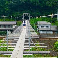 塩郷の吊り橋の写真・動画_image_268956