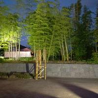 竹林園の写真・動画_image_272493